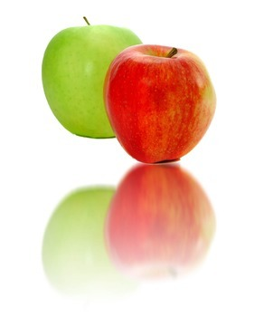 Photoshop Elements Unit 1 Apples Step 3 with final example image