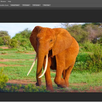 Photoshop CS6 Tutorial - Turning a photograph into an oil painting