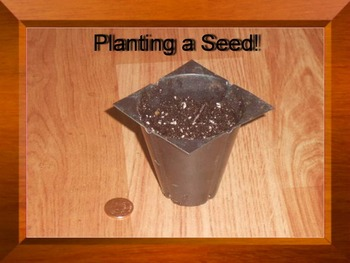 Video - Planting a Seed