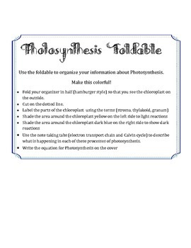 Photosynthesis foldable organizer