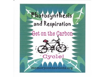 Photosyntheis and Respiration - Get on the Carbon Cycle