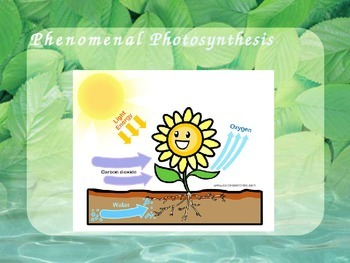Photosynthesis!