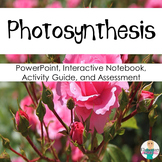 Parts of a Leaf: Photosynthesis Assessment, Presentation & Interactive Notebook