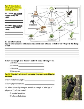 Photosynthesis, Adaptations, Food Web/Chains Assignment