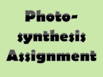 Photosynthesis Assignment