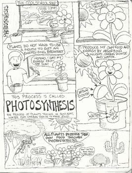 Photosynthesis Comic (Blackline)