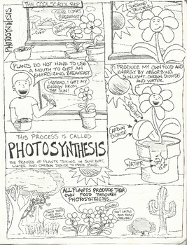 Photosynthesis Comic (Blackline)
