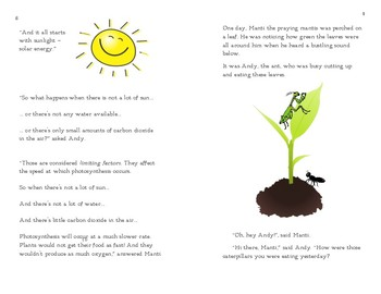 Photosynthesis Booklet