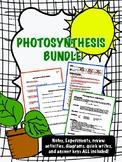 Photosynthesis Bundle - Notes, Activities, Quizzes, Diagra