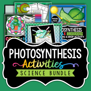 Photosynthesis Bundle - Save over 25%