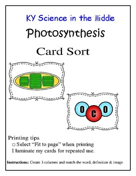 Photosynthesis Card Sort Activity
