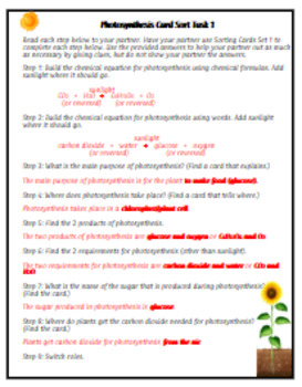 Photosynthesis Card Sort Activity Task Cards