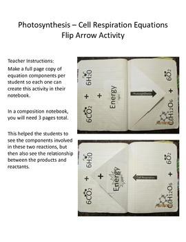 Photosynthesis Cell Respiration Equation Flip Arrow Activity