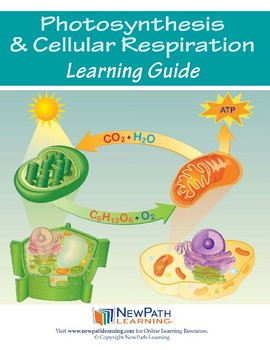 Photosynthesis & Cellular Reproduction Student Learning Guide