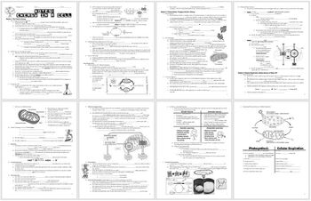 Photosynthesis, Cellular Respiration, & Energy Lecture Notes Handout for Biology