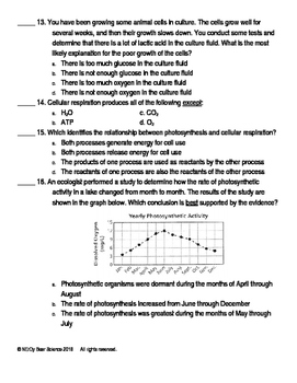 Photosynthesis/Cellular Respiration Test