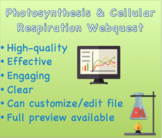Photosynthesis & Cellular Respiration Webquest