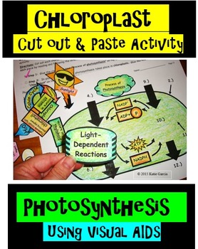 Chloroplast Cut Out and Paste Activity for Photosynthesis