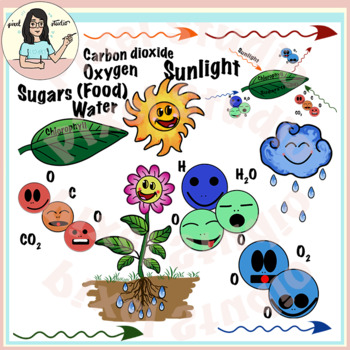 photosynthesis clipart by pixel studio teachers pay teachers rh teacherspayteachers com Smoke Clip Art photosynthesis clipart free