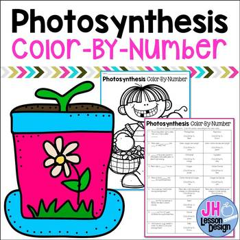 Photosynthesis Color-By-Number