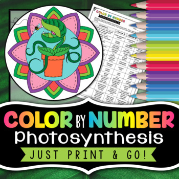 Photosynthesis - Color By Number