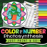 Photosynthesis Color By Number - Science Color by Number | Distance Learning
