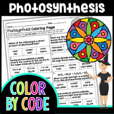 Photosynthesis Science Color By Number or Quiz