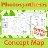 Photosynthesis Concept Map