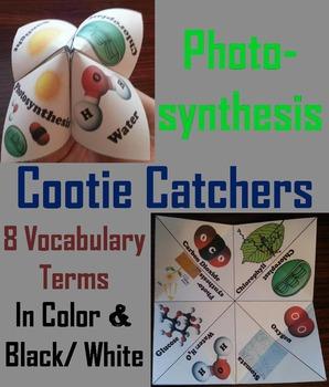 Photosynthesis Foldable/ Activity (No Prep SCOOT Unit Review Quiz Game)
