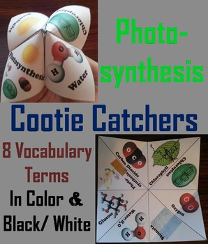 Photosynthesis Activity (No Prep SCOOT Unit Review Quiz Game)