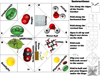 Photosynthesis Activity (No Prep SCOOT Unit Review Quiz Game)