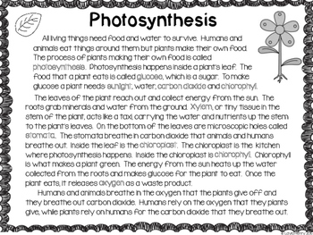 Photosynthesis Craftivity {CLOSE Read & Writing}