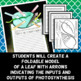 Photosynthesis Craftivity - Foldable & Writing Prompt