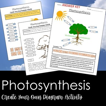 Photosynthesis- Create your own diagram activity!