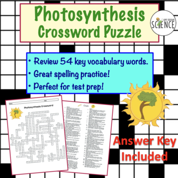photosynthesis crossword puzzle by amy brown science tpt. Black Bedroom Furniture Sets. Home Design Ideas