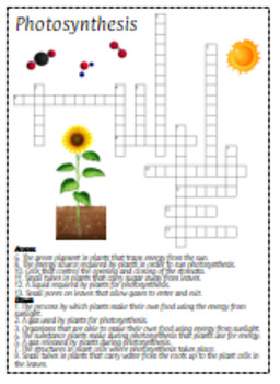 Photosynthesis Crossword Puzzle Review for Interactive Notebooks and Regular