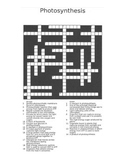 Photosynthesis Crossword Vocab Review