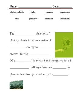 Photosynthesis, Cruical to the life cycle
