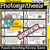Photosynthesis Detective Puzzle Matching Review Game-Forest Edition