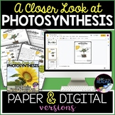 Photosynthesis Differentiated Reading Comprehension Passag