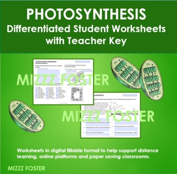 Photosynthesis Differentiated Worksheets with Graphs and Key