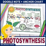 Photosynthesis Doodle Note + Anchor Chart