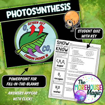 PHOTOSYNTHESIS DOODLE NOTES, INTERACTIVE NOTEBOOK, MINI ANCHOR CHART