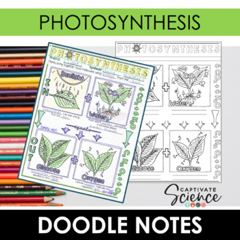 Photosynthesis Doodle Notes