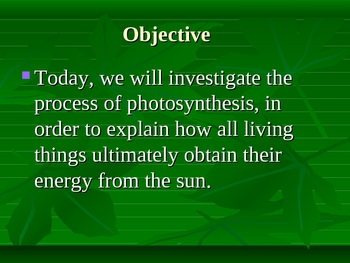 Photosynthesis Dynamic Graphic Organizer