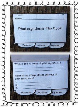 Photosynthesis Flip Book