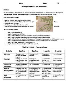 Photosynthesis Flip Chart Assignment