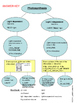 Photosynthesis Graphic Organizer- light dependent vs light independent reactions