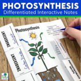 Photosynthesis Activities   Foldable and Task Cards
