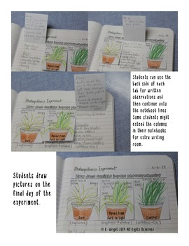 Photosynthesis For Interactive Notebooks